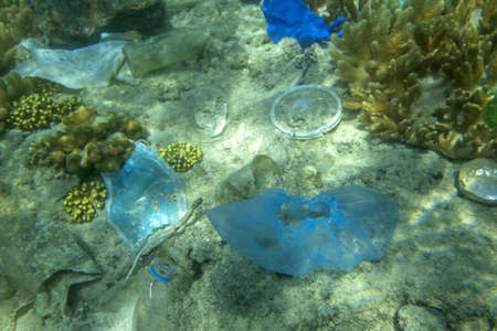 Face masks and plastic debris on bottom in Red Sea. Coronavirus COVID-19 is contributing to pollution, as discarded used masks clutter polluting seabed along with plastic trash Reklamní fotografie