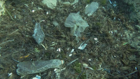 Massive plastic pollution of the ocean bottom. Seabed covered with a lot of plastic garbage. Bottles, bags and other plastic debris on seabed in Mediterranean Sea. Plastic pollution of the Ocean