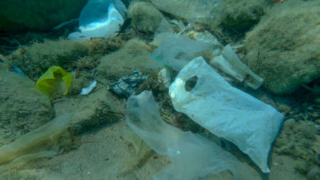 Seabed covered with a lot of plastic garbage. Bottles, bags and other plastic debris on seabed in Adriatic Sea. Plastic pollution of the Ocean. Adriatic sea