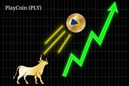 Gold bull, throwing up PlayCoin (PLY) cryptocurrency golden coin up the trend. Bullish PlayCoin (PLY) chart Illustration