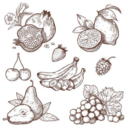 Icons of sweet fruits and berries on a white background
