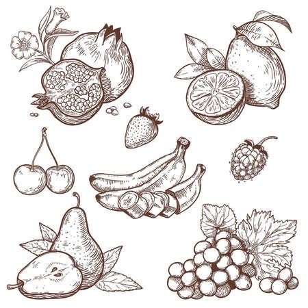 Iconen van zoete vruchten en bessen op een witte achtergrond Stock Illustratie