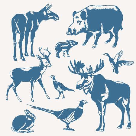 deers: vector de animales silvestres y aves en un fondo blanco