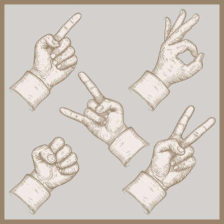 illustration of five hands