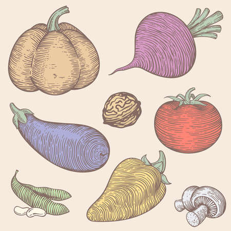 isolated set of vegetables in light colors