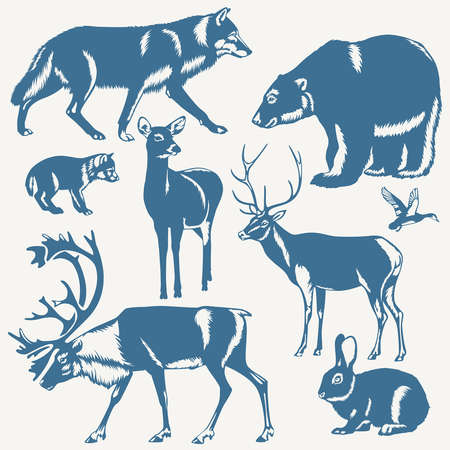 bear silhouette: vector wild northern animals and bird on a white background Illustration