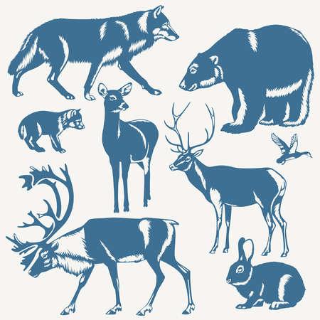 vector wilde noordelijke dieren en vogels op een witte achtergrond Stock Illustratie