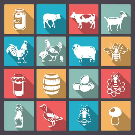 chicken farm: Vector icons of livestock and food from the farm in flat design Illustration