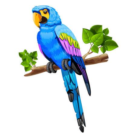 illustratie van een grote blauwe papegaai op een tak op een witte achtergrond