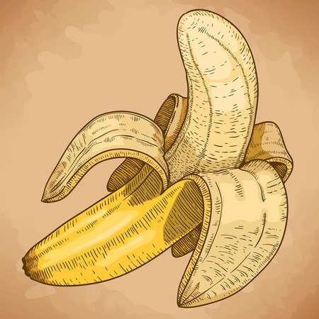 graveren vector illustratie van gele in retro stijl
