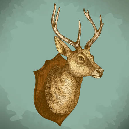 Antique illustration of a reindeer head in retro style