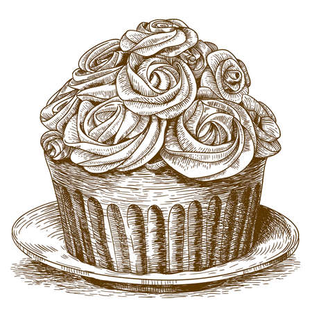 sweet bun: vector illustration of engraving cake on white background