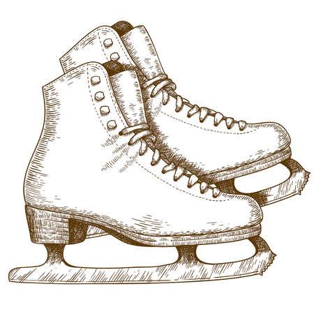 patinaje sobre hielo: Grabado antigua ilustración de zapatos de patinaje sobre hielo y hojas aisladas sobre fondo blanco