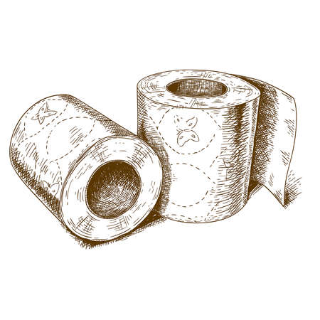 toilet paper art: Vector engraving antique illustration of a   toilet paper on white background