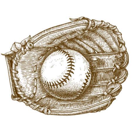 guante de beisbol: ejemplo antiguo grabado de un guante de b�isbol y la bola sobre fondo blanco