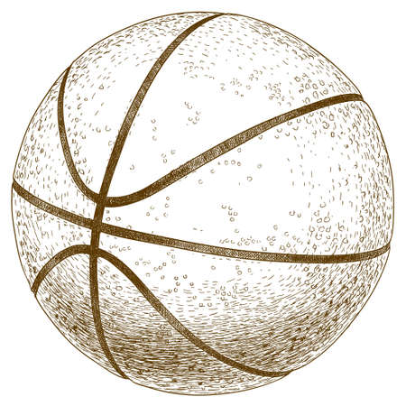 pencil drawing: antique engraving illustration of basketball ball isolated on white background