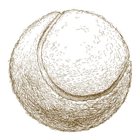 spot lit: antique engraving illustration of tennis ball isolated on white background