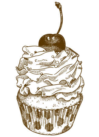 Vector antique engraving drawing illustration of delicious cupcake isolated on white background Çizim