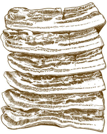 Vector antique engraving drawing illustration of bacon slices isolated on white background Çizim