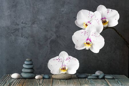 tower of stones and orchid flowers on a gray background