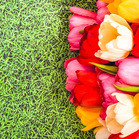 A bunch of bright fresh colorful tulips on a grass background Foto de archivo