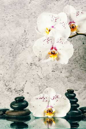 tower of stones and orchid flowers on a light gray background