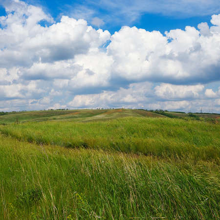 Summer natural landscape, meadow, field with a path, fresh green grass, bushes and trees on the hills. Beautiful blue sky with clouds. 免版税图像