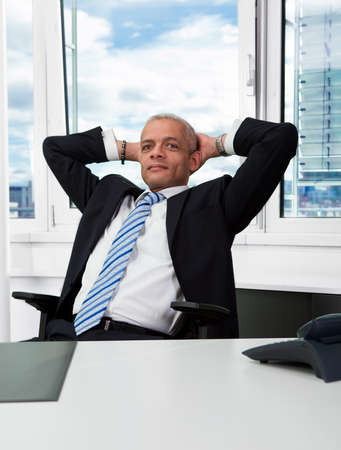 Successful businessman Stock Photo - 8551043