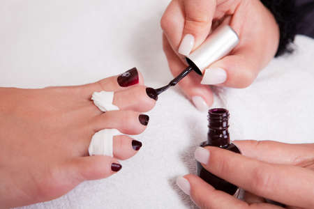 Beautician working on toenails Stock Photo - 10468779