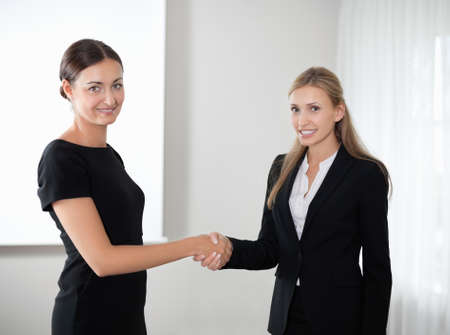 Business women shaking hands making a deal Stock Photo - 10694879
