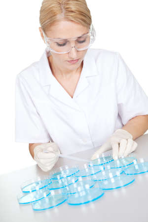 Researcher making an expering using petri dishes in laboratory photo