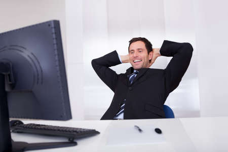 Portrait Of Happy Businessman Cheering At Workplace Stock Photo - 15404044