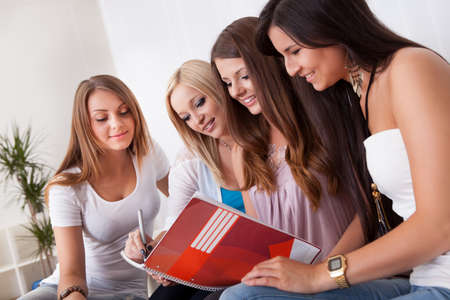 Four cheerful female students doing homework at home Stock Photo - 15720087