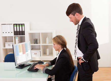 Auditor explaining account processes for year-end report. Stock Photo - 16522064