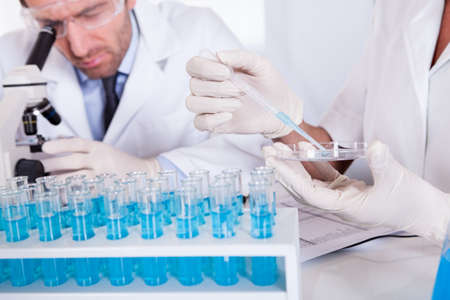 technologists: Two technologists at work in a laboratory Stock Photo