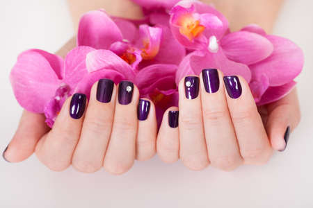 acrylic nails: Woman with beautifully manicured purple nails holding a handful of pink flower petals