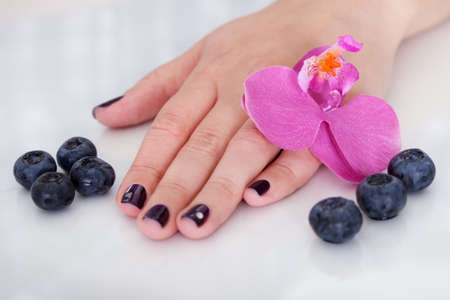 handcare: Fresh pink orchids surrounding the hand of a woman with beautiful purple nails