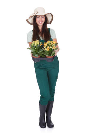 Beautiful Happy Woman Holding Flower Plant. Isolated On White Stock Photo - 17626437