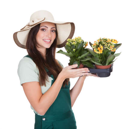 Beautiful Happy Woman Holding Flower Plant. Isolated On White Stock Photo - 17626277