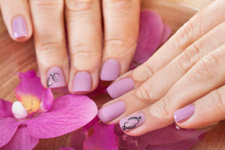 pink nails: Close-up Of Female Hands Getting Manicure Treatment