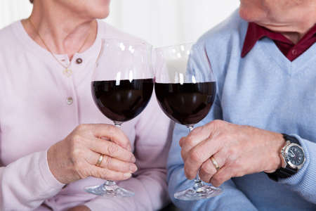 dinner party people: Senior Couple Toasting Glass Of Wine; Indoor Stock Photo