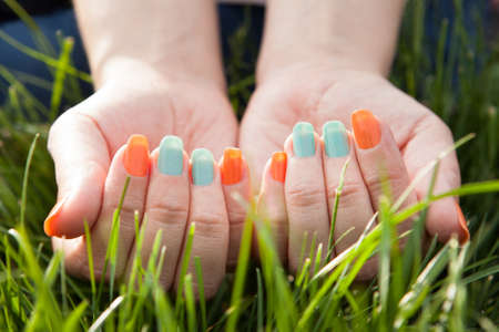 Close Up Of Woman's Hand With Colorful Nail Varnish On Grass Stock Photo - 21043857