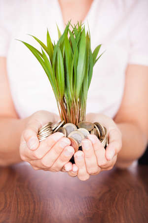 Close-up Of Hand With A Plant Growing From Pile Of Coins photo