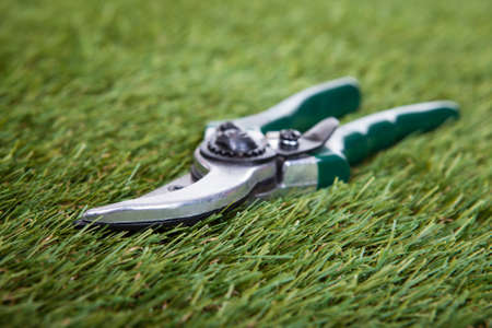 handtool: Close-up Of Pliers Gardening Tool On Green Grass Stock Photo