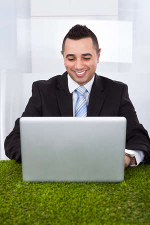 man front view: Happy young businessman using laptop on grass in office Stock Photo