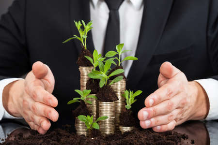 Midsection of businessman protecting coins in saplings representing responsible business Stock Photo