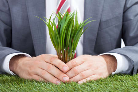 environmental conversation: Midsection of businessman holding saplings on meadow