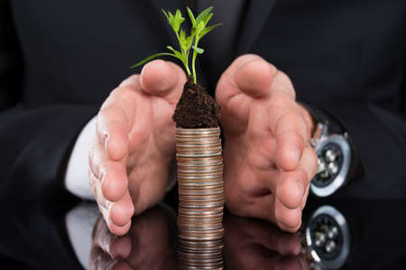 cropped image: Cropped image of businessman protecting plant on stacked coins at desk