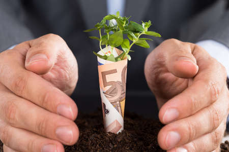 plant growth: Businessman protecting small sapling growing from soil