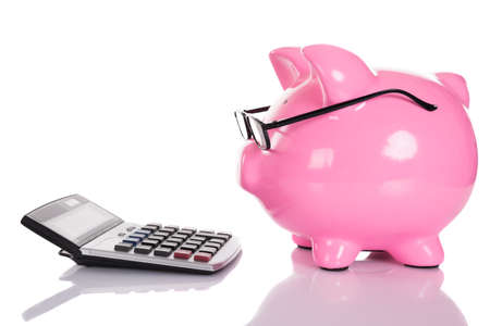 smart: Piggybank looking at calculator. Isolated on white